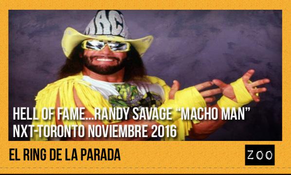 ring-noviembre-2016